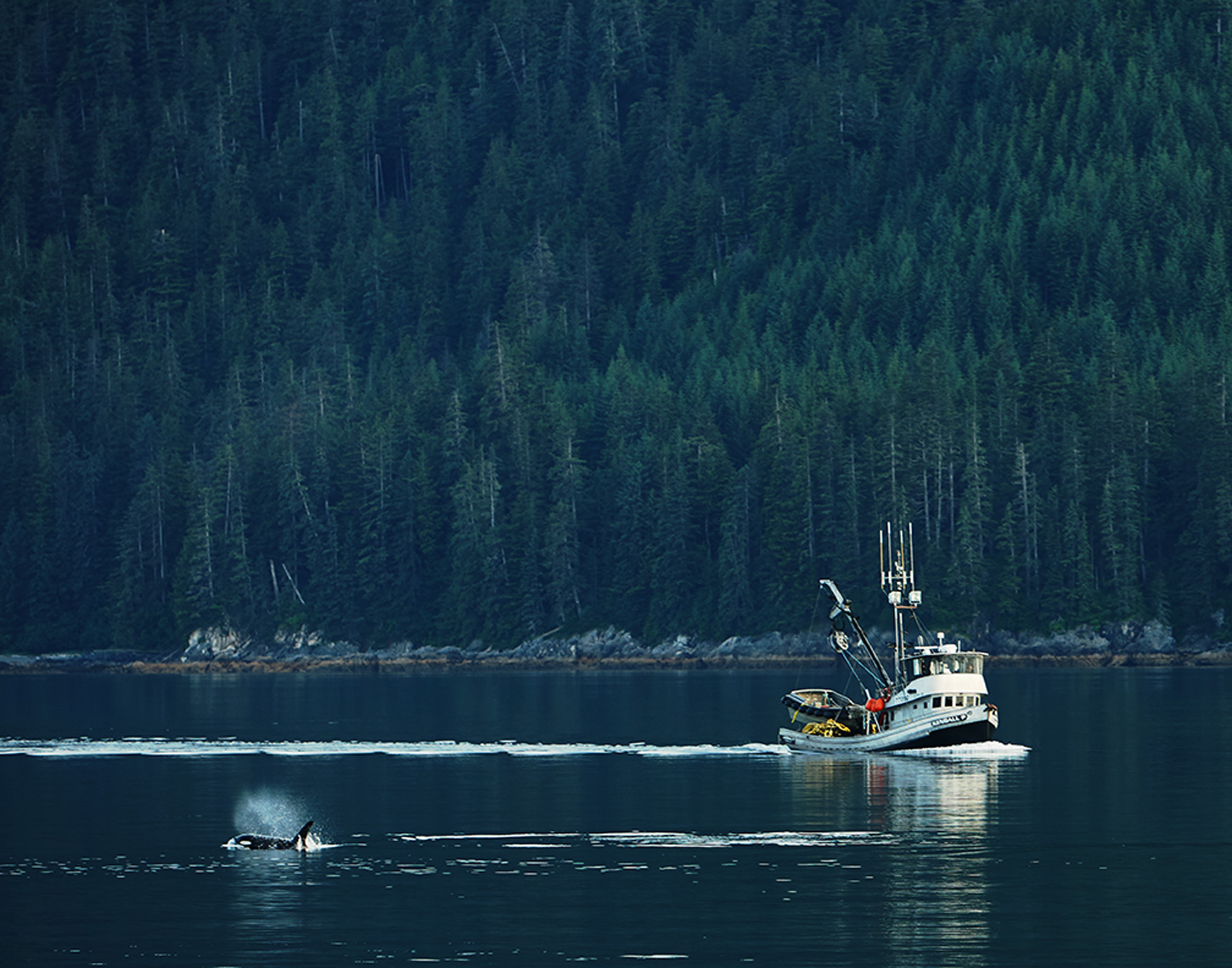 06-28-2017_fishing_boat_orca