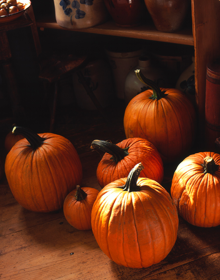 pumpkins in country pantry